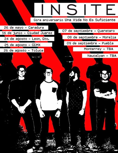 insite tour