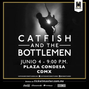 Catfish and The Botlemen - Flyer